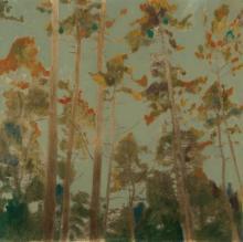 Original-Casey McKee-Forest