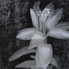 Original-Liz Jardine-Graphic Blooms V