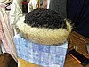 A Russian fur lined hat