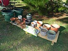 A large quantity of assorted plant pots