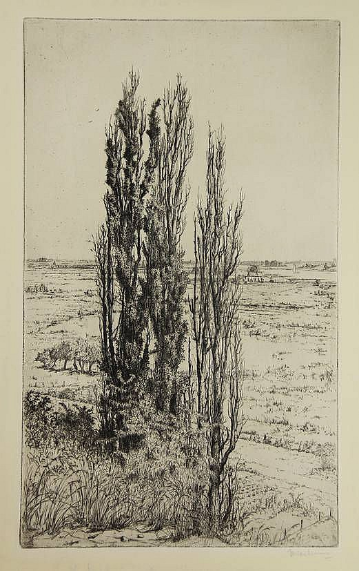 Nachenius, J.C. (1890-1987). (De Rijn vanaf de Wageningse berg). Etching, 41,2x24,7 cm., signed in pencil. - Blank margins traces of former passepartout.