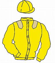 The British Horseracing Authority Sale of Racing Colours: YELLOW, BEIGE epa