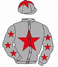 The British Horseracing Authority Sale of Racing Colours: GREY, RED star, G