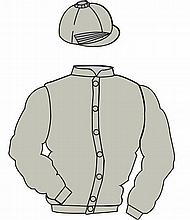 The British Horseracing Authority Sale of Racing Colours: SILVER, tassel on