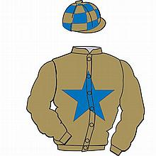 The British Horseracing Authority Sale of Racing Colours: GOLD, ROYAL BLUE