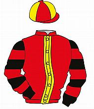 The British Horseracing Authority Sale of Racing Colours: RED, YELLOW strip