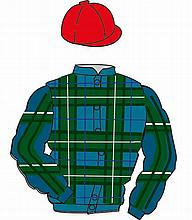 The British Horseracing Authority Sale of Racing Colours: DOUGLAS TARTAN, R