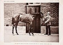 Twelve Victorian supplement photographic prints of celebrated racehorses, i