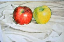 Auguste Mosca signed still life/Apples