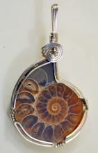 Ammonite wire wrapped pendant