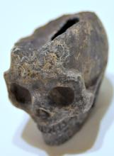 Amethyst geode skull druzy crystals