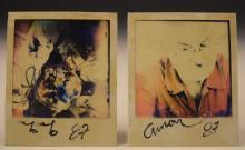 Arman Signed Polaroid