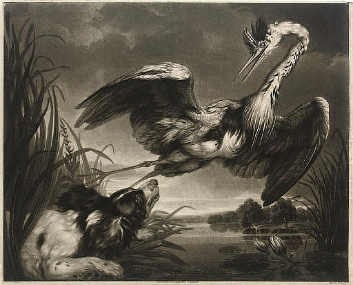 Heron and Spaniel