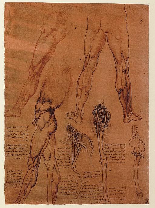 LEONARDO DA VINCI (1452-1519).  Quaderni d'anatomia, I-VI: Fogli della Royal Library di Windsor, pubblicati da C.L. Vangensten, A. Fonahn, H. Hopstock . Christiana: J. Dybwad, 1911-1916.