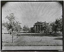 Photograph, Evans
