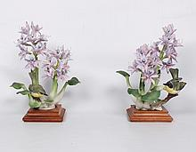 PAIR OF DOROTHY DOUGHTY YELLOW THROAT GEOTHLTPUS TRICHAS WATER HYACINTH PORCELAIN FIGURES