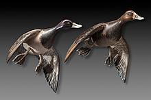 Flying Bluebill Pair