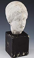 Museum Copy of a Greco-Roman Bust