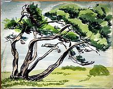 ELLISON,   J. MILFORD  (  American (1909-1993)  ) (Big Tree)