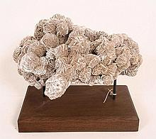 A Desert Rose Fossil of sculptural form mounted on a heavy oak plinth
