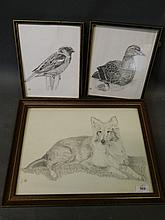 A pencil drawing, portrait of a dog, and two