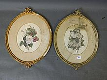 M.A. Hatcher, a pair of watercolours, roses and