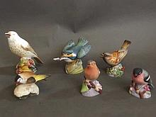 Six Royal Worcester studies of birds to include 'Thrush 3234', 'Kingfisher