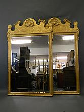 A good pair of Georgian style watergilt wall mirrors with carved shell decoration, 51'' wide, 80'' high