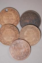 Canadian Large Cent Lot
