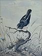 CAYLEY (Snr), Neville Henry (1853-1903)