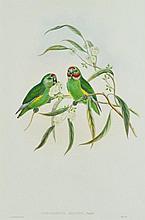 GOULD, John (1804-1881) & A W Hart