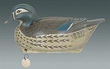 Wood Duck Hen by Leibensperger