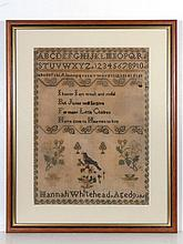 Sampler: Hannah Whitehead aged 9 1862 having a