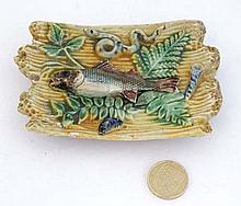 A small Palissy dish, moulded with a sardine, water weeds and various sea c