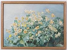 Florence Raingill Walker (XX) Harrogate,  Watercolour,  ' Marsh Marigolds '.  Signed low