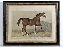 Horse Racing: a hand coloured etching of the