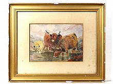 Scottish School c.1900 Watercolour Highland Cattle
