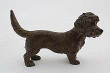 A Vienna cold painted bronze of a Dandie Dinmont dog . Indi