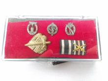 Nazi Award Pin Grouping