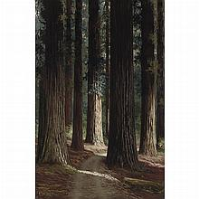 Charles Theller Wilson American, 1855-1920 Forest Interior, 1911