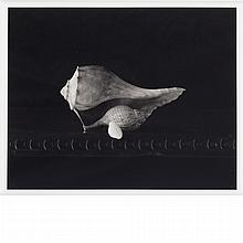 MELLOR, DOUGLAS (b. 1947) Gift of Shells 2003.