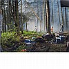 CREWDSON, GREGORY (b. 1962) Production Still (Forest Gathering 31). Digital chromatic print, 11 7/8 x 15 7/8 inches (305 x 4...