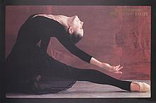 25 Harvey Edwards Black Swan Posters