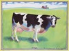 Signed McMullan Cow Offset Lithograph