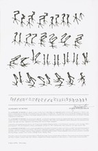 Signed Cutler- Shaw Alphabet of Bones Offset Lithograph