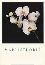 1989 Mapplethorpe Orchids Poster