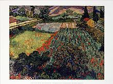 Vincent van Gogh - Poppy Field - 2011