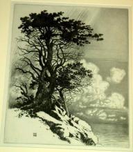 Burr, George Elbert. COAST AT MONTEREY, CALIFORNIA