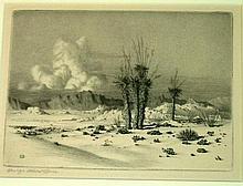 Burr, George Elbert (Amer. 1859-1939). EVENING, ARIZONA