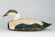 EXCEPTIONAL EIDER DRAKE DECOY From Maine. Maker unknown. In original paint; body painted in a stylized pattern. Carved eye.